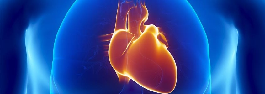Commonly-Overlooked-Heart-Attack-Symptoms-in-Men-845x300
