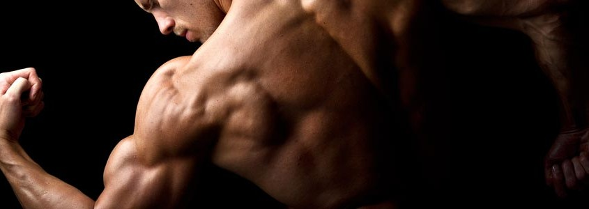 How-to-Build-Muscle-with-a-Fast-Metabolism-845x300