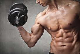 Helps in gain muscle