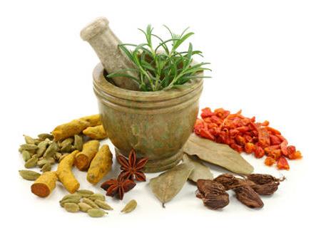 Tribulus Terrestris Ingredients