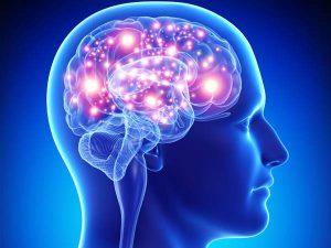 69bb2c67548e2ccd4b69c9f23103605f_philly420-this-is-your-brain-brain_600-450