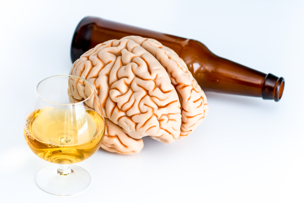 How Alcohol Affects Brain Cell Production?