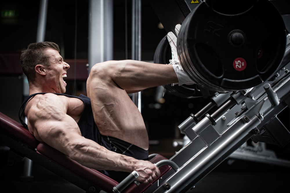 Top 8 Beginner-Level Exercises for Strong and Muscular Legs